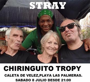 Caleta Tropy Stray
