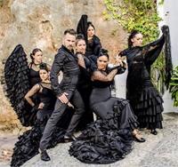 Daniel Romero Flamenco