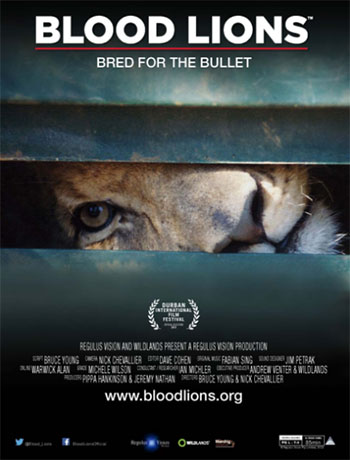 Film Blood Lions