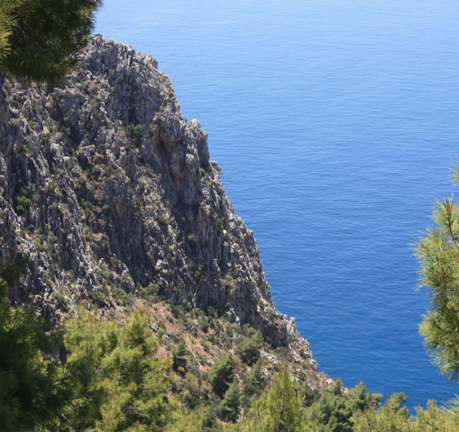 Maro Cerro Gordo 14001316 1