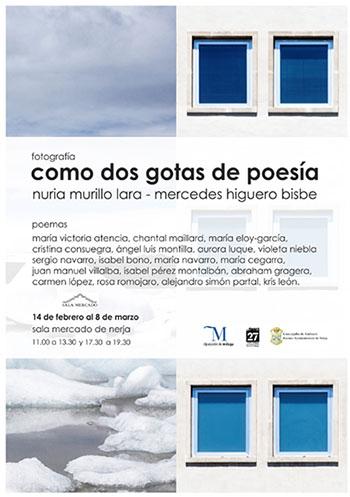 Nerja Sala Mercado Poesia