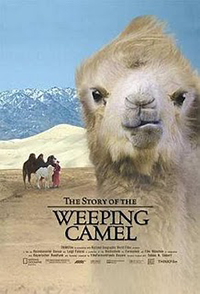 Film The_Story_of_the_Weeping_Camel