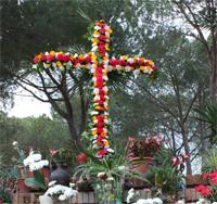 Cruses de Mayo 2013 1