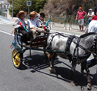 San Isidro 2015 3