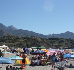 San Juan 2013 Burrina 800752