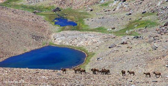 Sierra Nevada Lanjaron