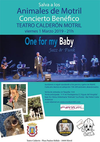 Motril One for my Baby 201903