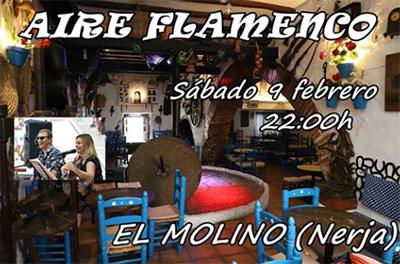 Nerja Molino Aire Flamenco 201902