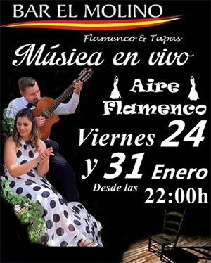 Nerja El Molino Aire Flamenco 202001